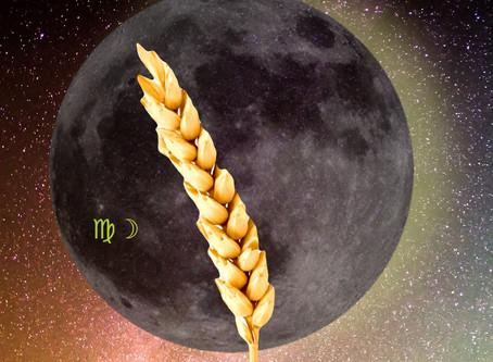 Moon in Virgo: Leo Seasons 2018