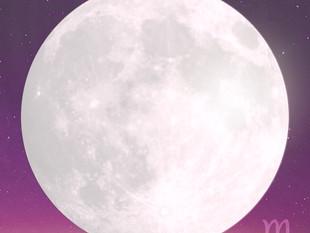 Full Moon in Scorpio. Taurus Season 2019