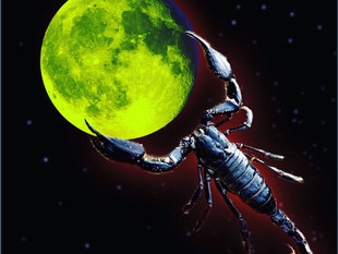 Moon In Scorpio. Aries Season 2019
