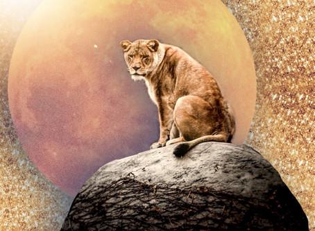 Moon In Leo. Capricorn Season 2018/19