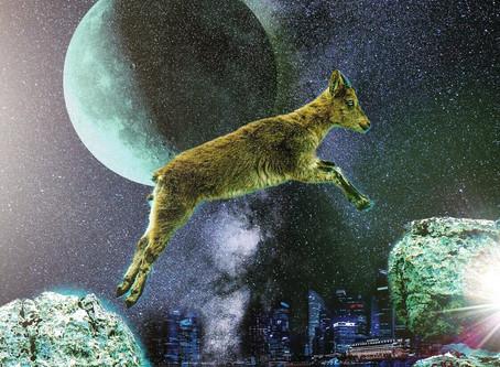 Moon In Capricorn. Pisces Season 2019