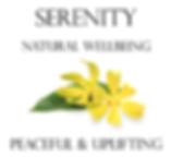 Serenity Image 2020.png