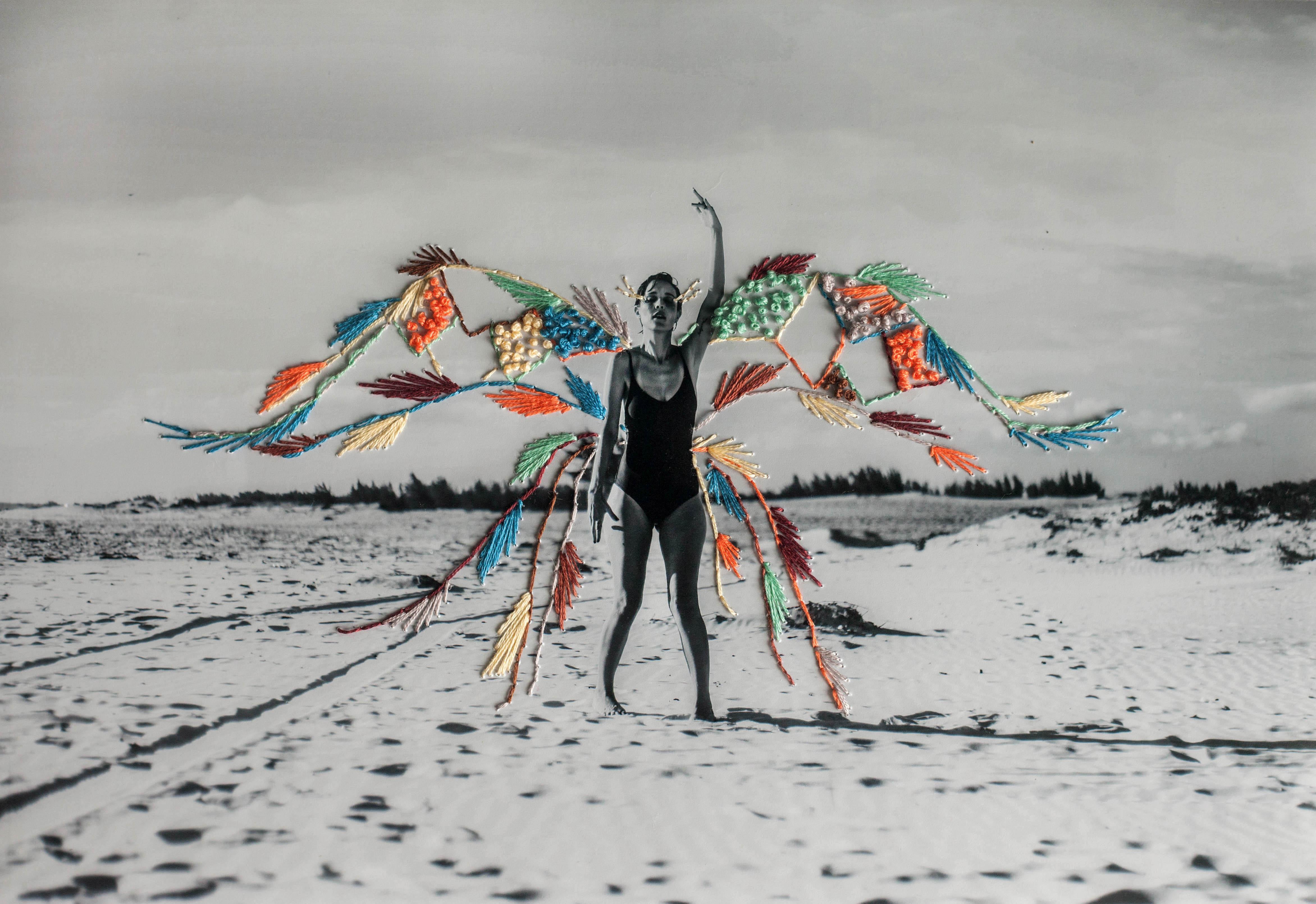 Foto e Bordado, Aline Brant 2018