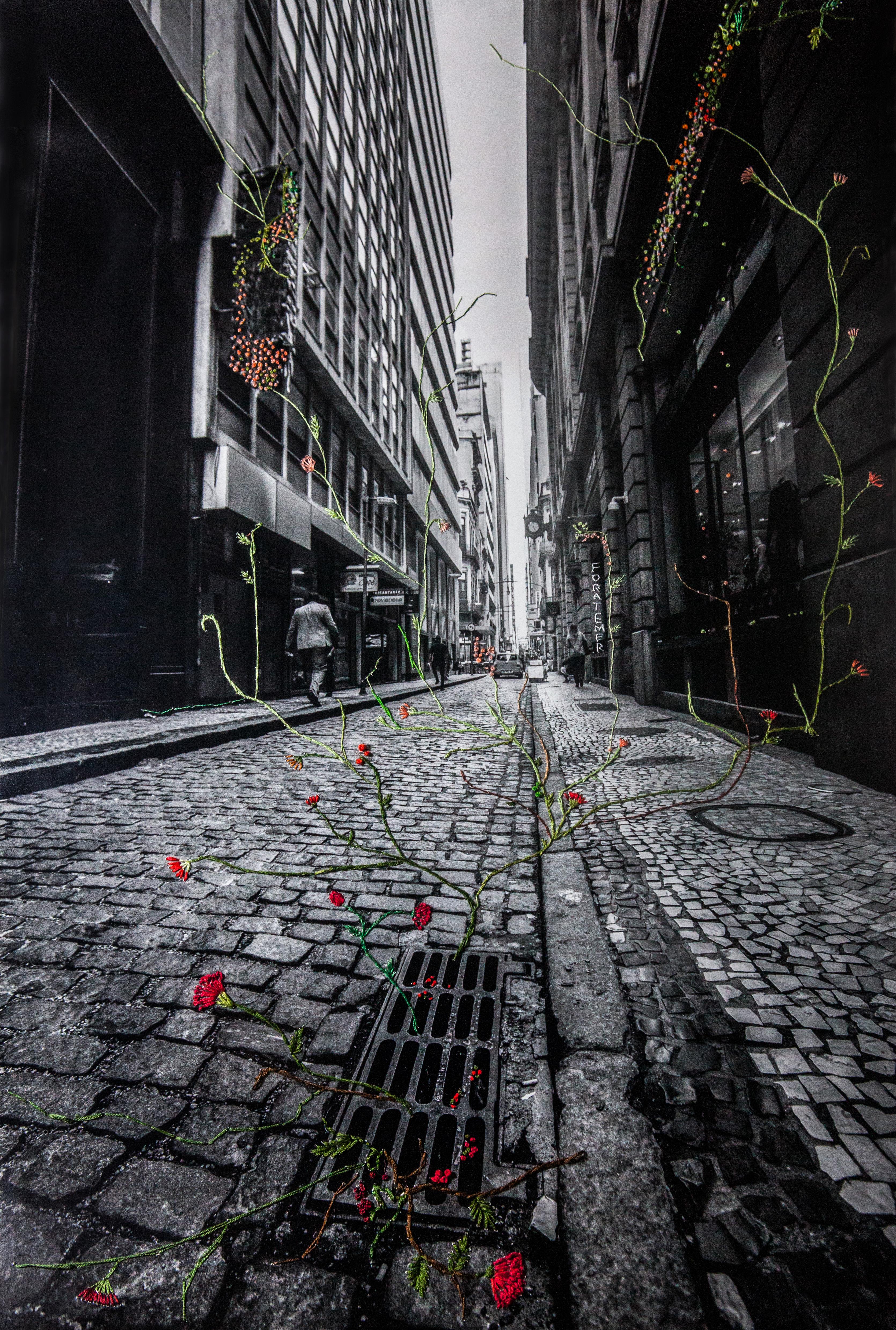 Rua do Ouvidor | JUN 2018 | RJ