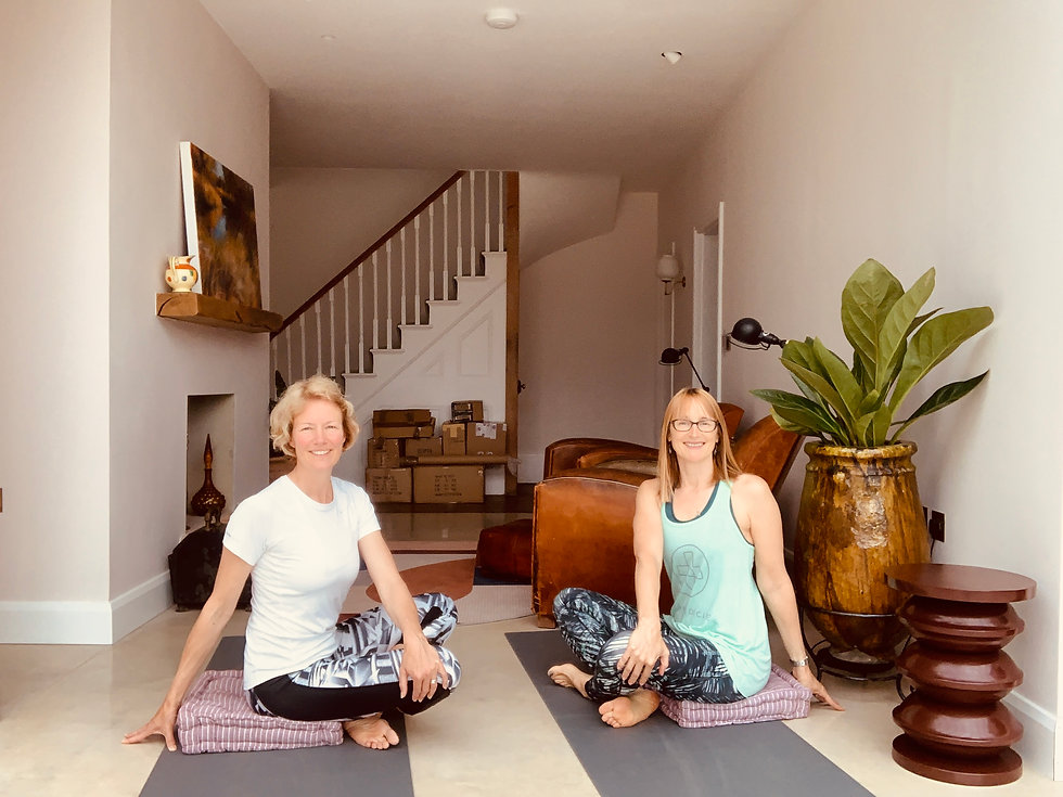 Private Yoga_Seated Twist.jpg
