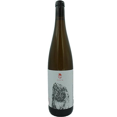 Riesling 2019 小鮮肉白酒