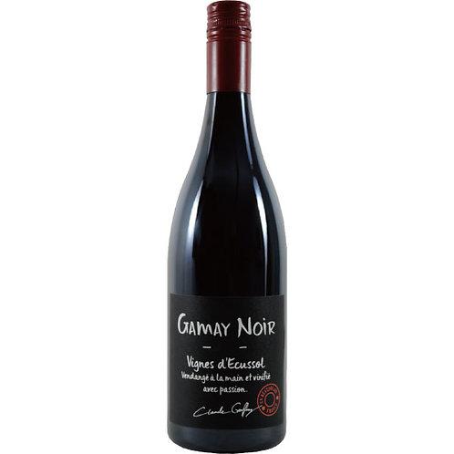 Gamay Noir 2017