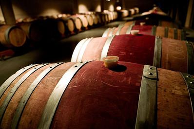 ferrer_bobet_winery_oak_vats_tina_roble_