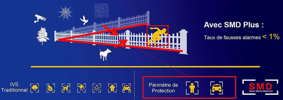 vsa securite perimetre de protection dah