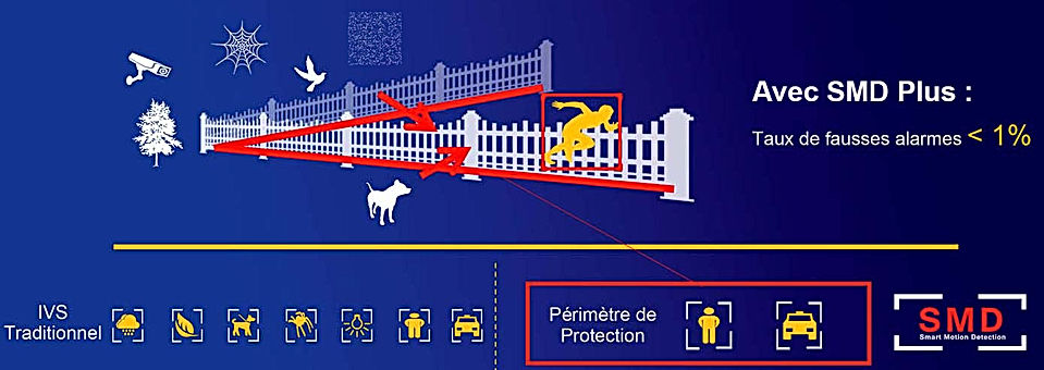 vsa securite perimetre de protection dah