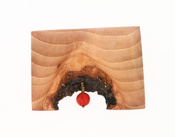 beech red coral brooch