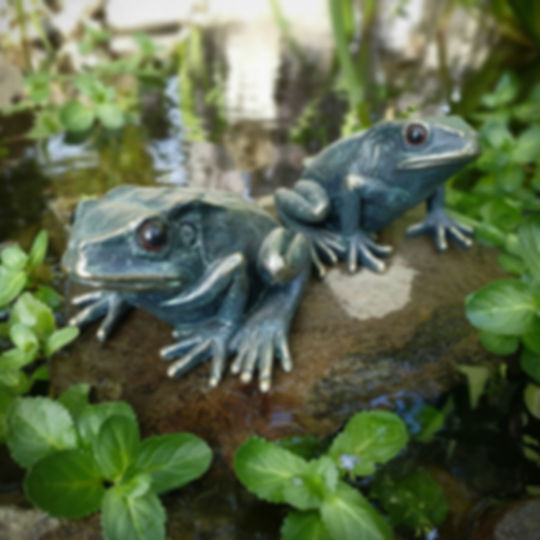 Set of 2 Frogs