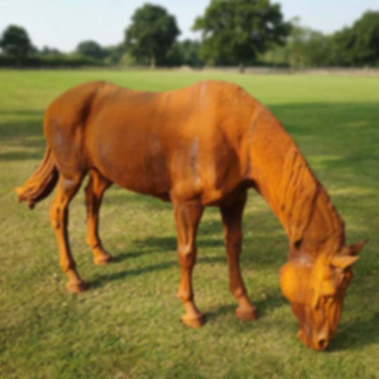Horse Head Down