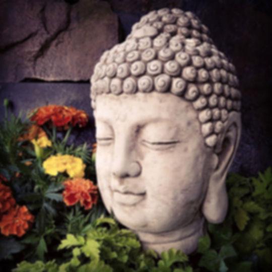 Buddha Head Medium