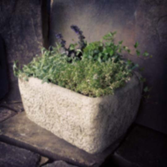Alpine Planter A