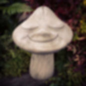 Toadstool Smiling
