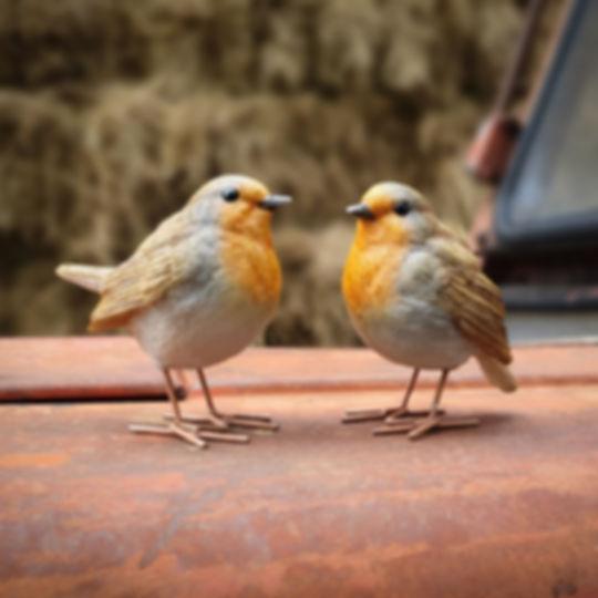 Set of 2 Robins