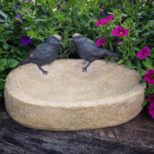 Birds on Bowl