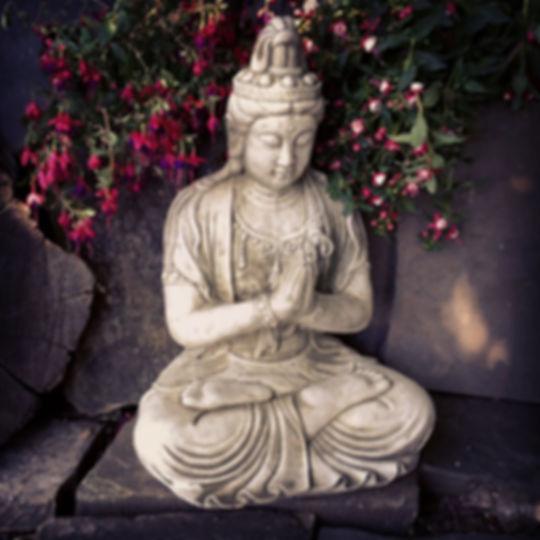 Praying Buddha C