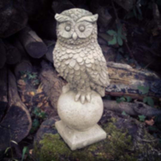 Owl on Ball