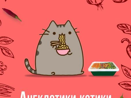 Котики и анекдотики