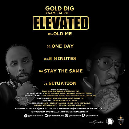 Elevated by Gold Dig and Mista Roe BACK
