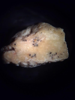 Apatite vein - (1 cm wide) - indicates proximal location to copper shell