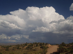 Monsoon season in the desert