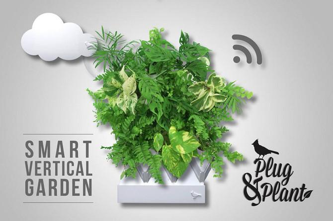 Plug & Plant - czyli Twój prywatny ogród wertykalny
