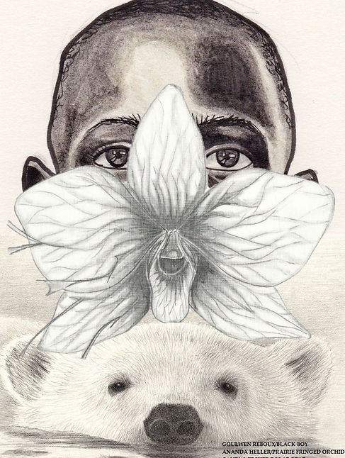 polar bears black boys and orchids NAMES