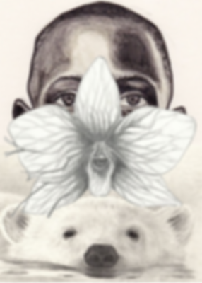 polar bears black boys and orchids.png