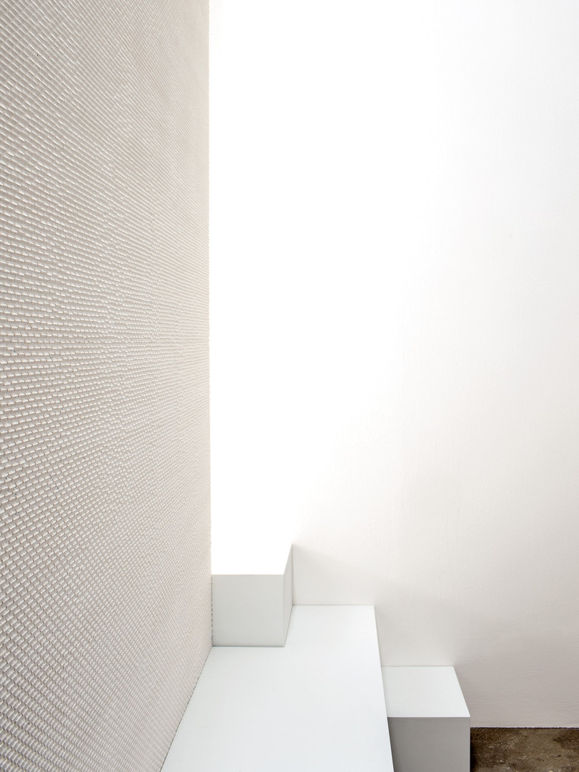 Phenomenon Mutina