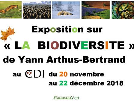 Expo Biodiversité