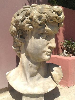 THE DAVID HEAD