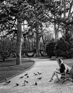 Sylvia Galmot Le printemps d une parisienne.jpg