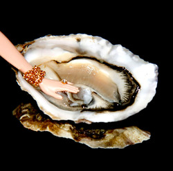 oyster touch