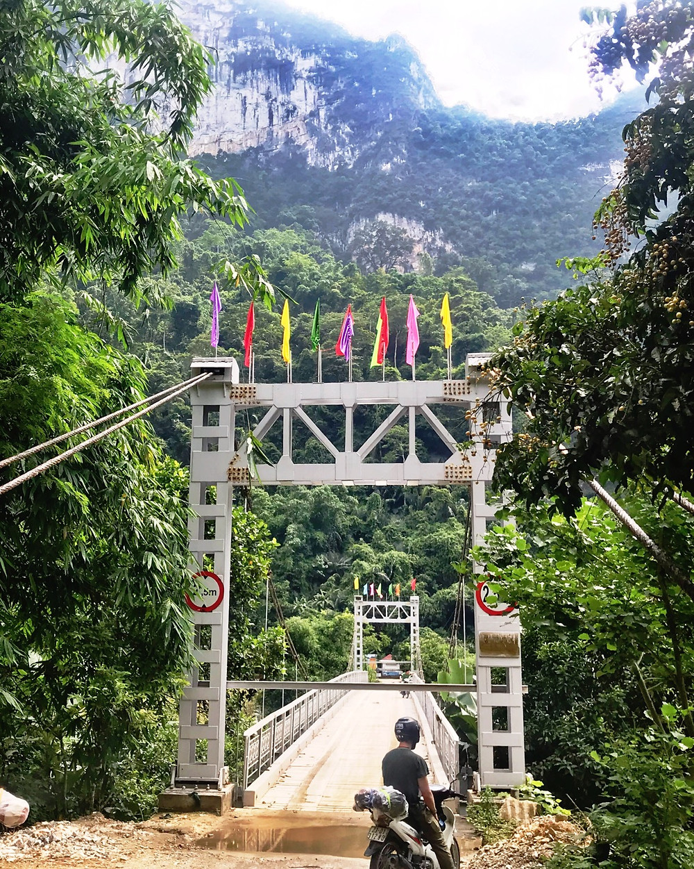 A bridge over Lake Ba Be in Northern Vietnam