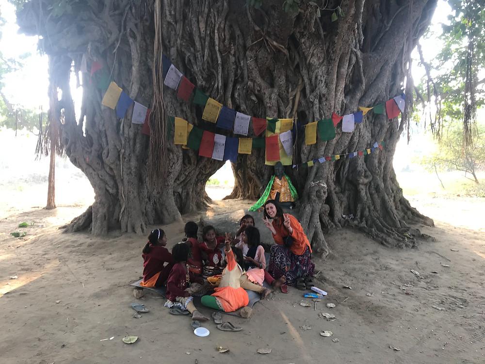 India, Bodhgaya, Banyan Tree, Totoro Tree