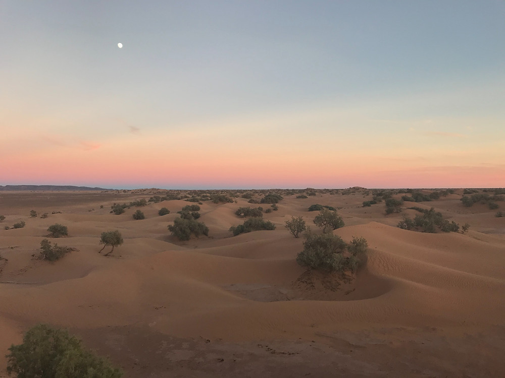 Moon rising over Saharan sand dunes sunset