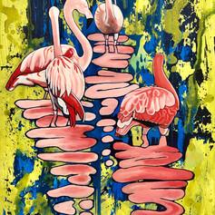 Flamingos Hanging Out 2