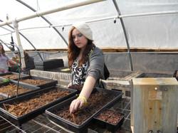 Teen seeding