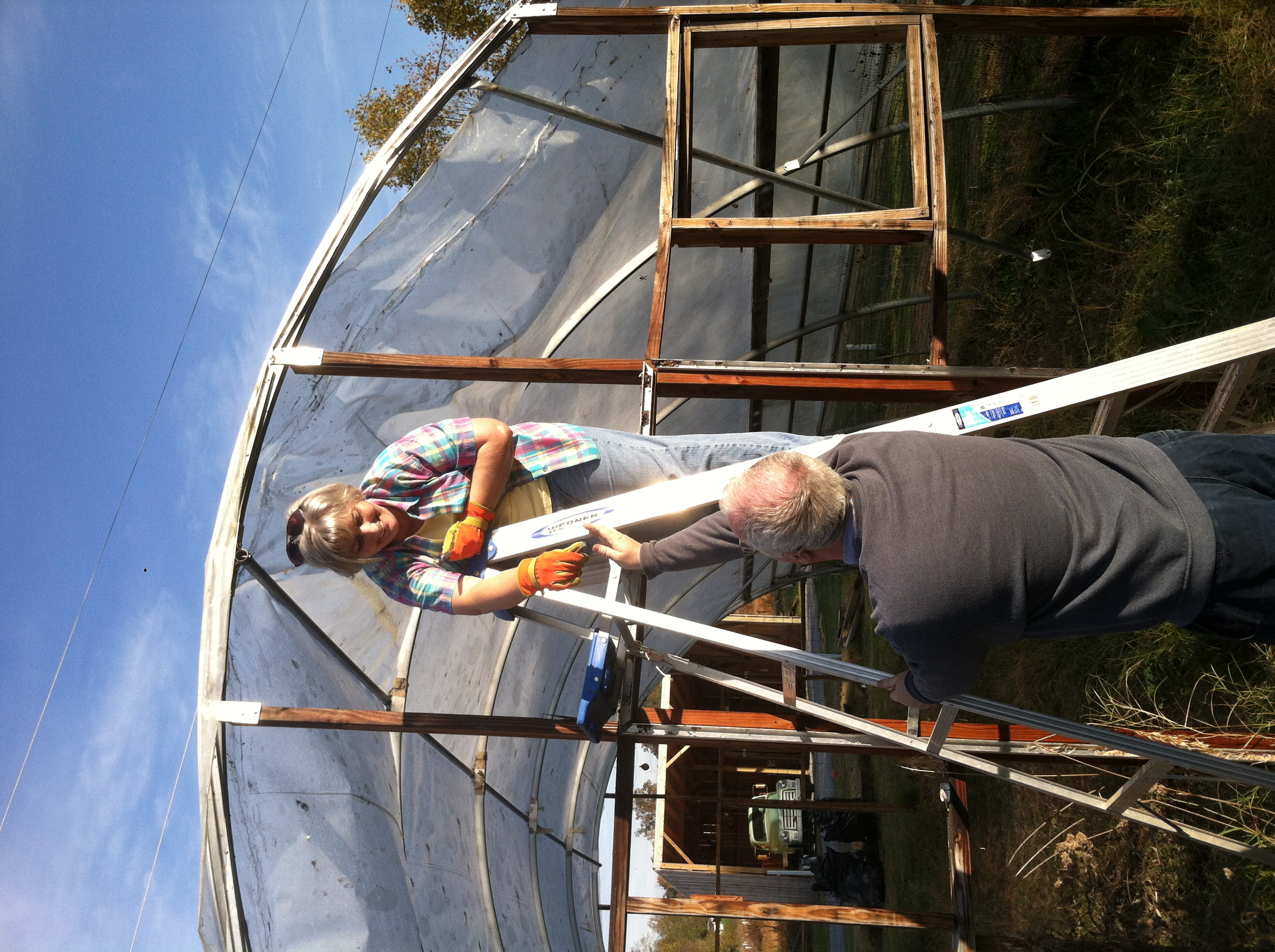 Building Hoop House