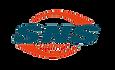 sns logo.png