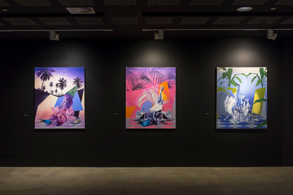 Installations of Hunting Trophy paintings at UNSW Galleries