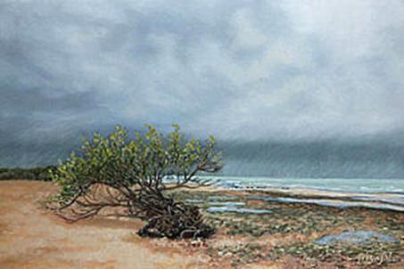 Storm on Honeymoon Island