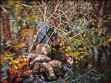 Brooker Pond
