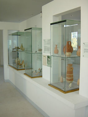 musee carthagere.jpg