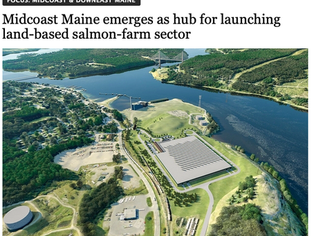 Great MaineBiz profile of Whole Oceans
