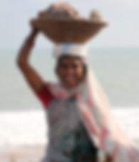 india-995216.jpg