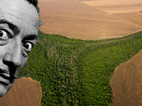What if Dali made Art about deforestation?